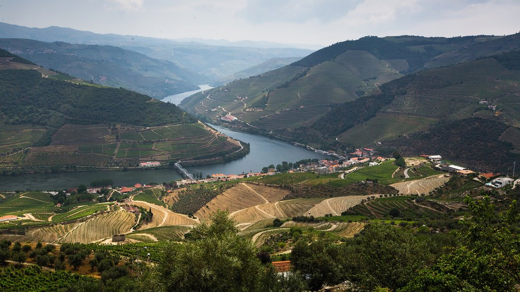 How to Get from Lisbon to Douro Valley