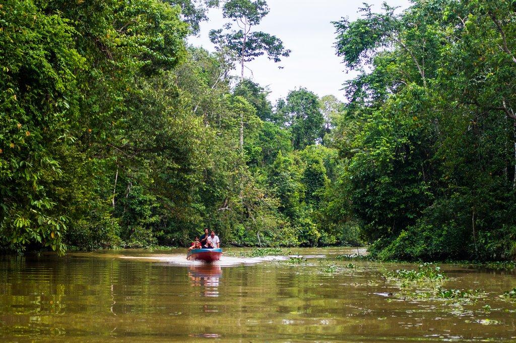 Boating along the Kinabatangan River