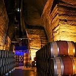 Wine cellar in the Rhône Valley