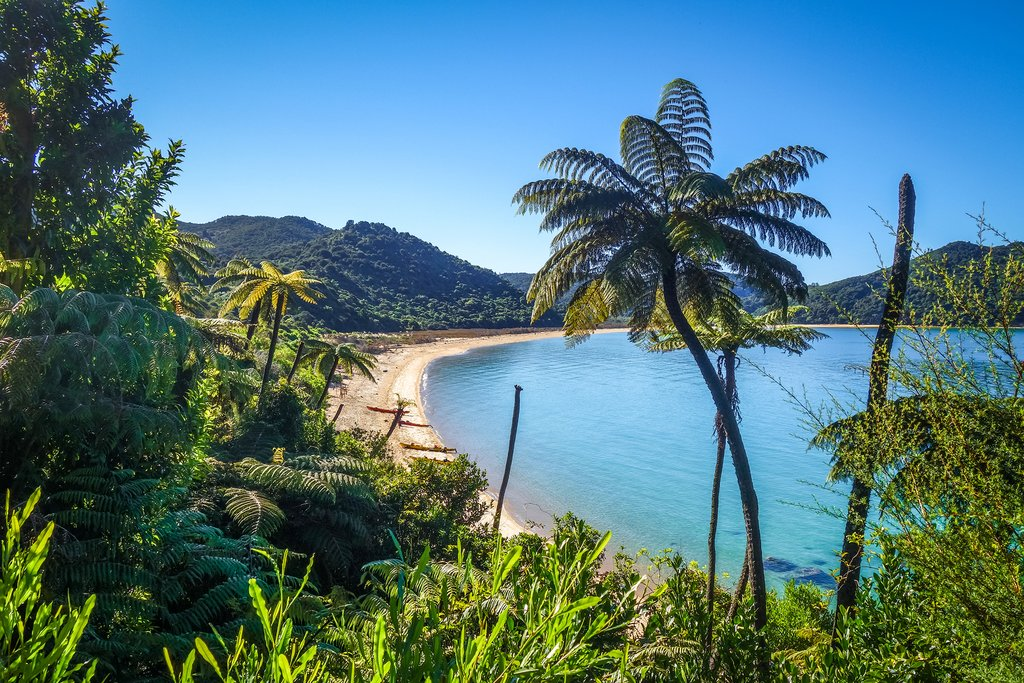New Zealand - Abel Tasman National Park. White sand bay and turquoise sea
