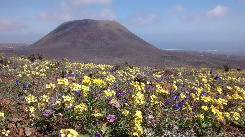 The volcano of La Corona.
