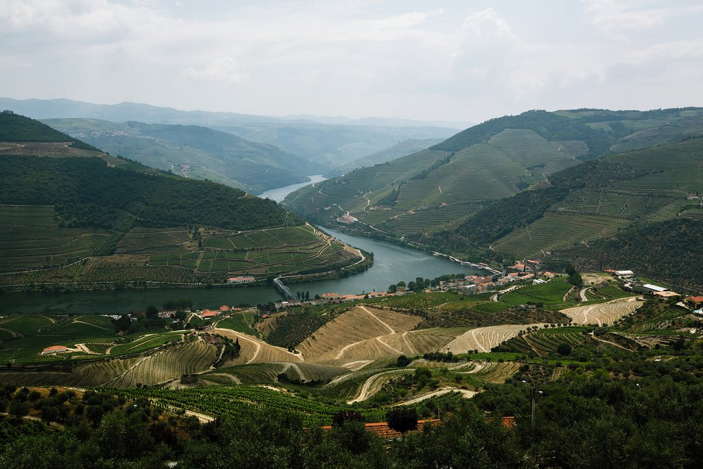 The Douro River snaking through the valley