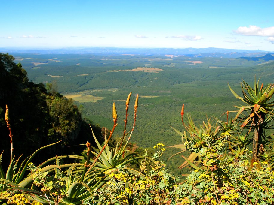 Hazyview landscape in Mpumalanga, South Africa