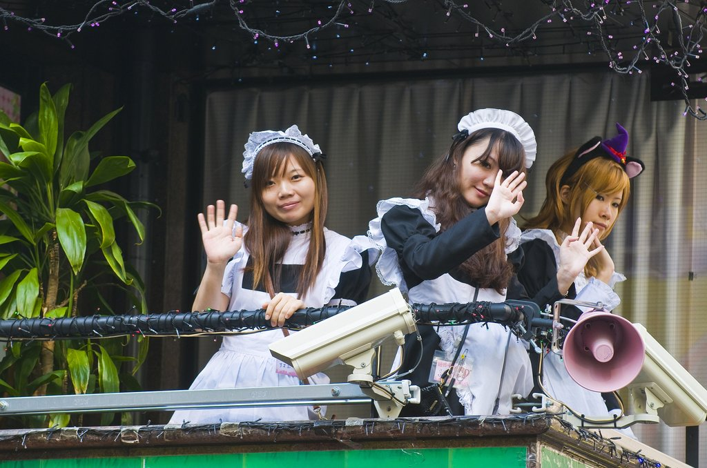 maid cafe waitresses