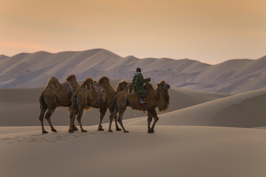 Mongolia's Gobi Desert