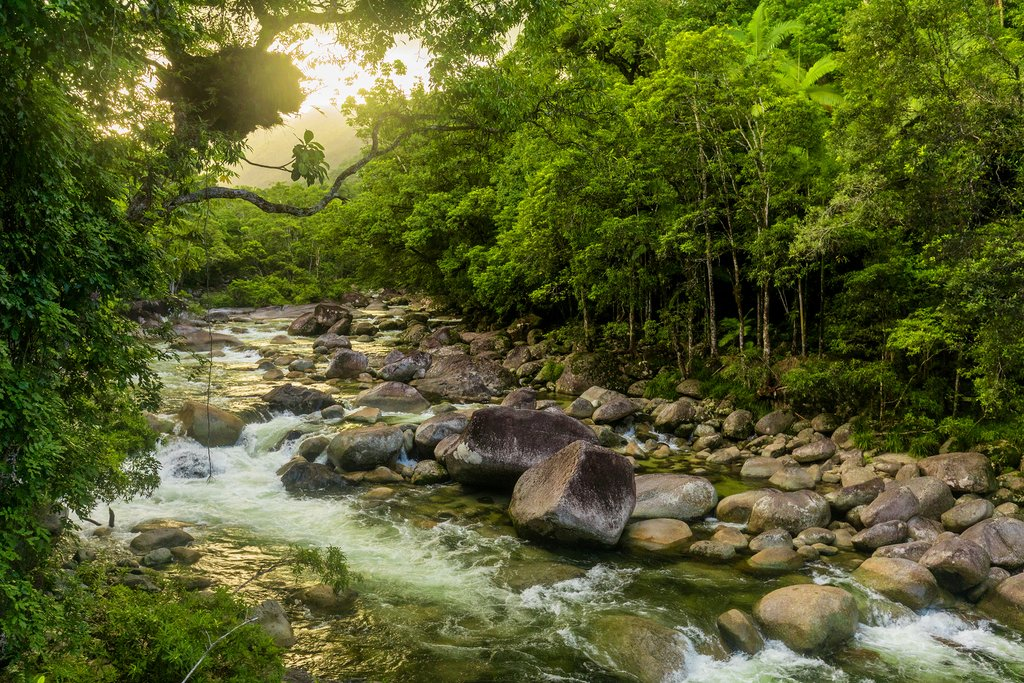 Australia - Daintree - River through Mossman Gorge