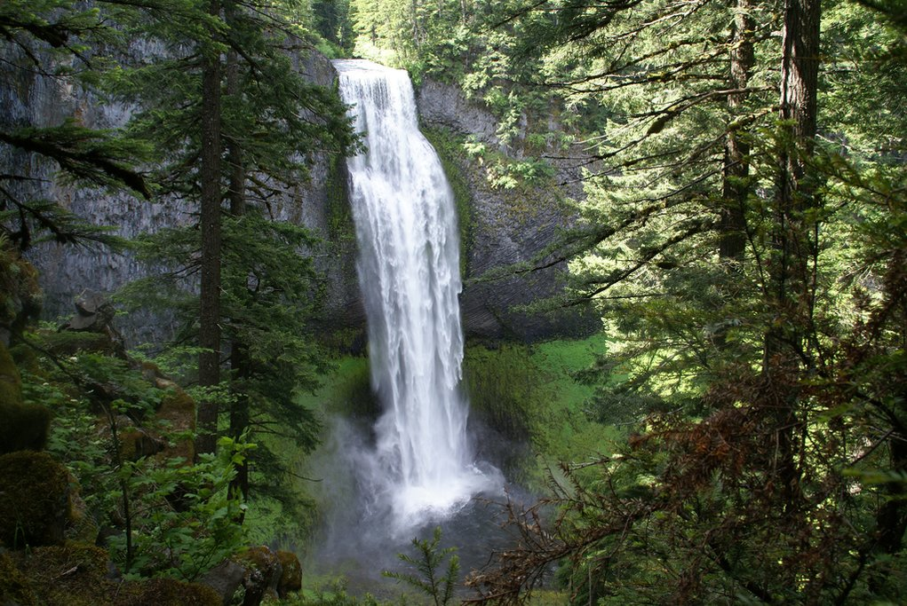 Salt Creek Falls (Photo courtesy of David K@Flickr)