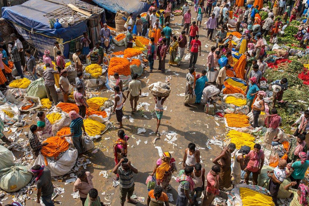 The Mullik Ghat Flower market in Kolkata