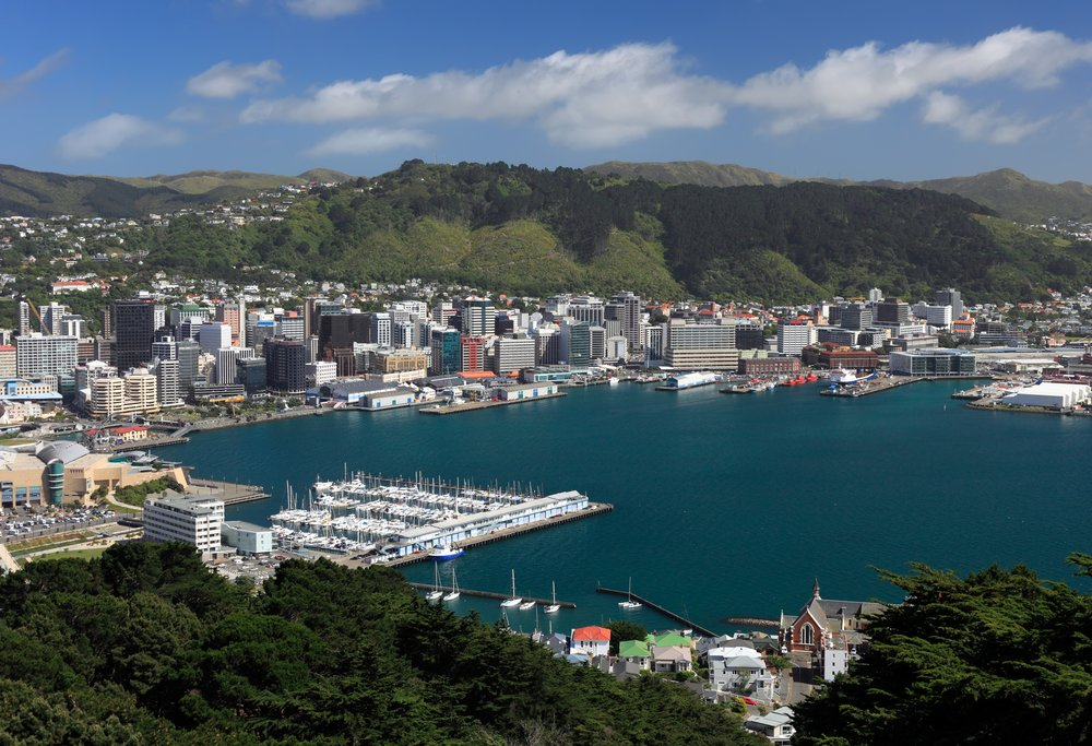New Zealand - Central Wellington - view from Victoria