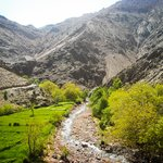 Day Trip to the Atlas Mountains from Marrakech