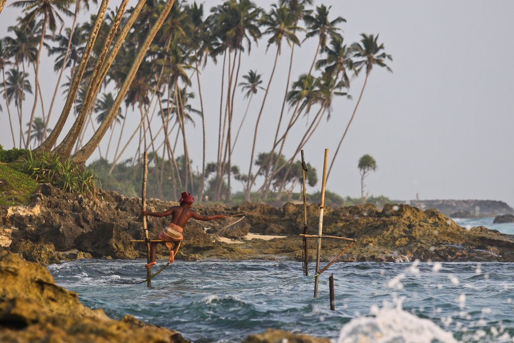 Witness local fishermen fishing in the traditional style on stilts