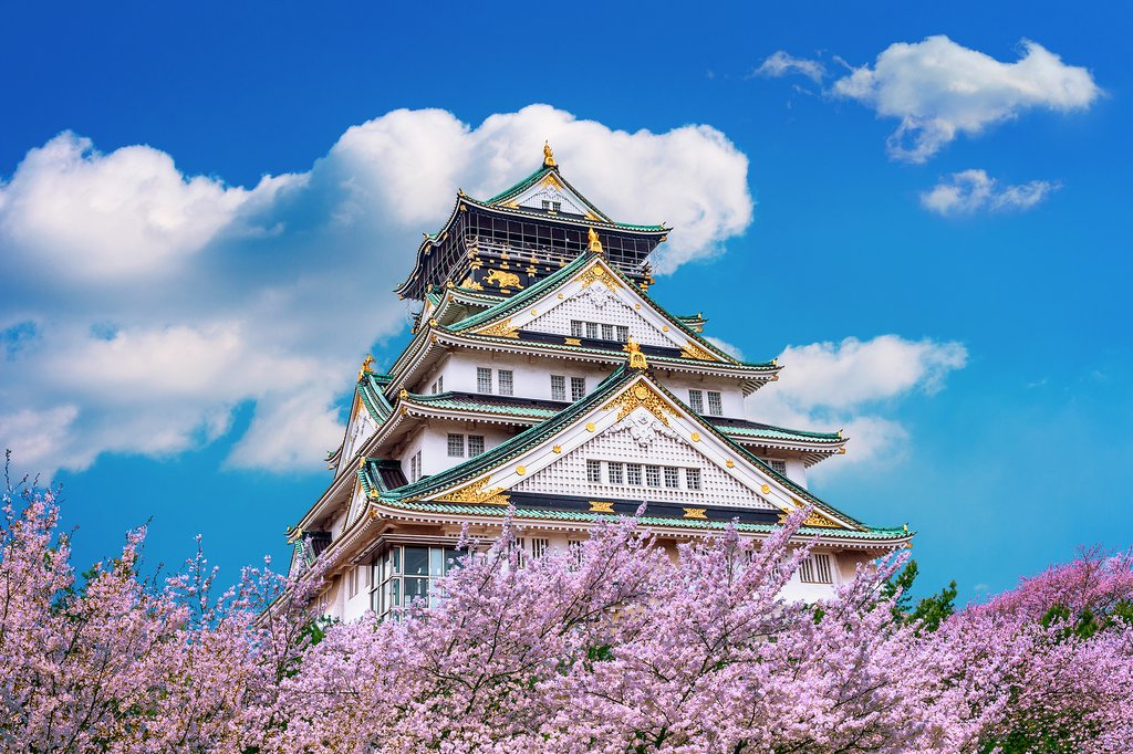 View of Osaka Castle During Cherry Blossom Season, Japan
