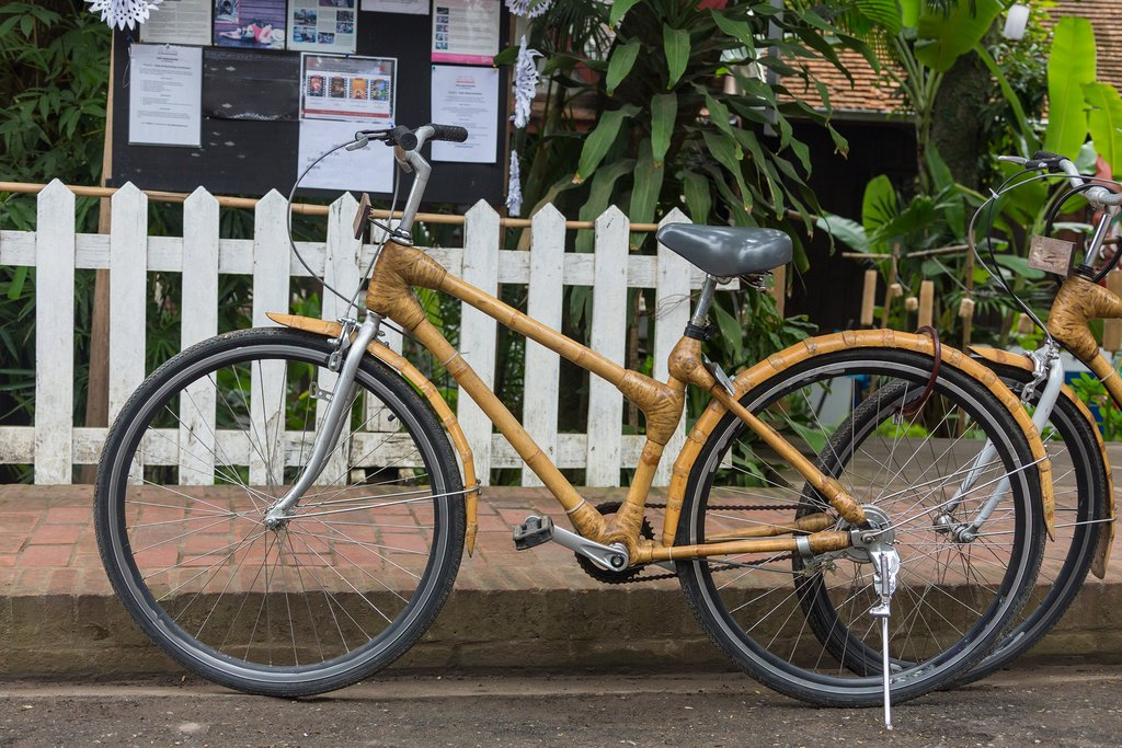 Your mode of transport: a bamboo bicycle
