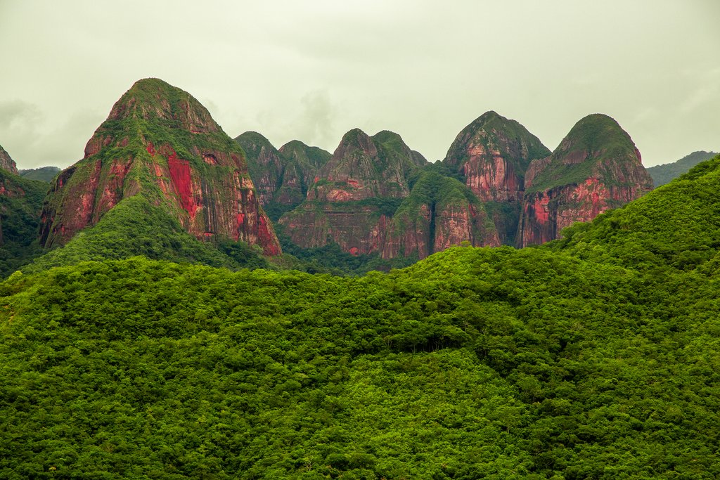 Amboró National Forest