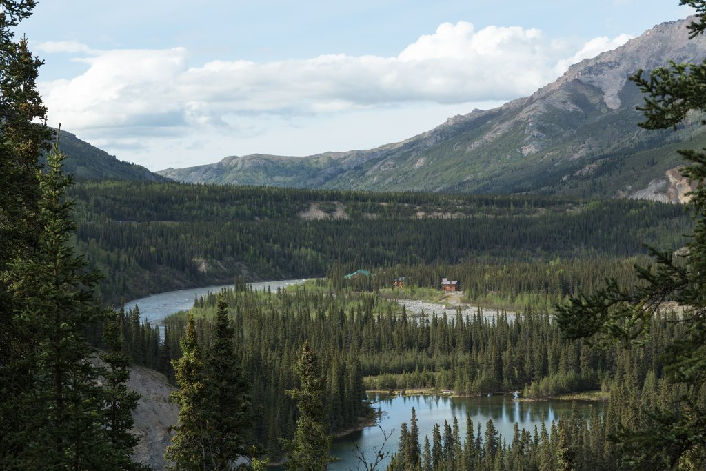 Alaska - Nenana River in Denali National Park