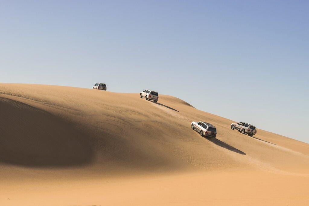 A safari adventure in the Siwa Desert