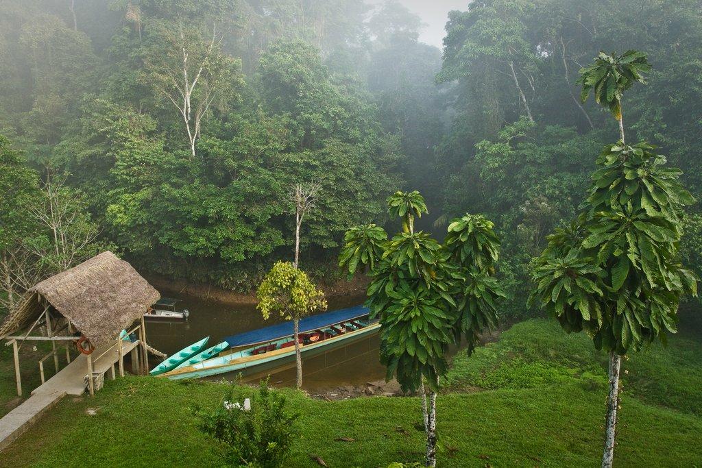 The Yasuní National Park