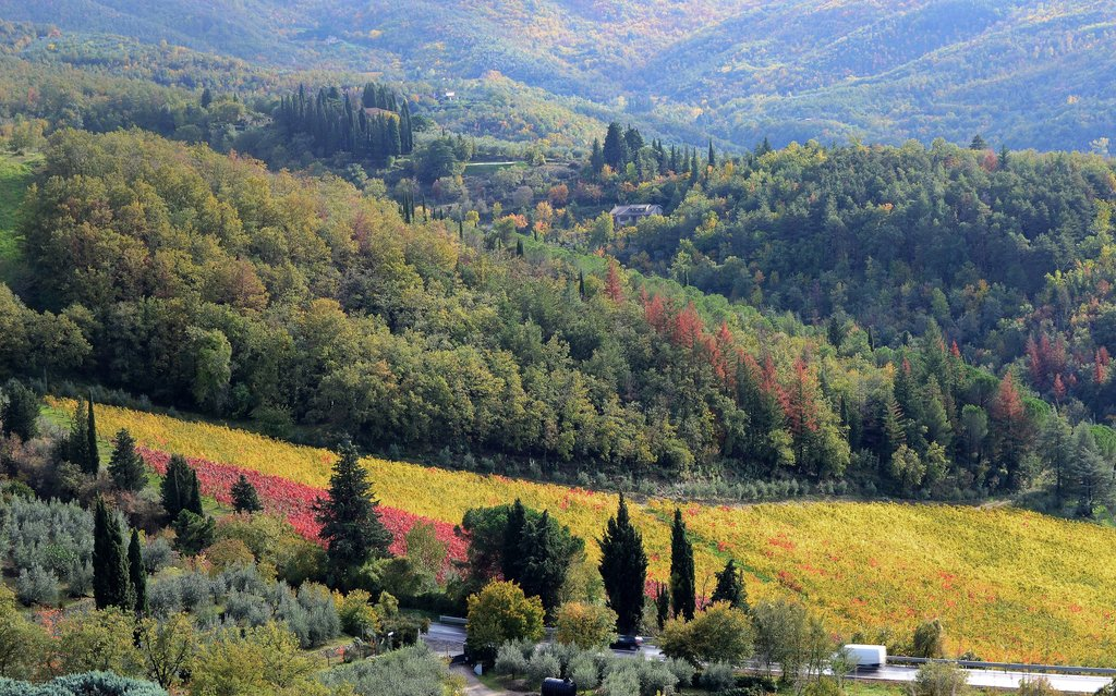 Autumn in Tuscany