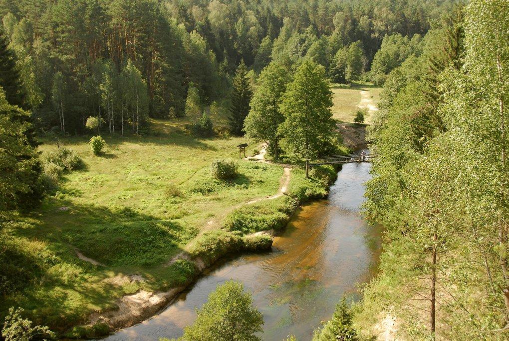 River, Dzukija National Park