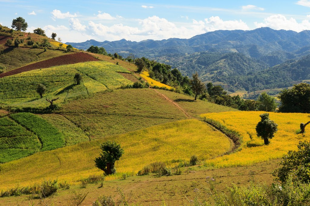 The breathtaking view of the colourful rolllings hills of the Kalaw highlands as seen when trekking from Kalaw to Inle Lake, Myanmar.