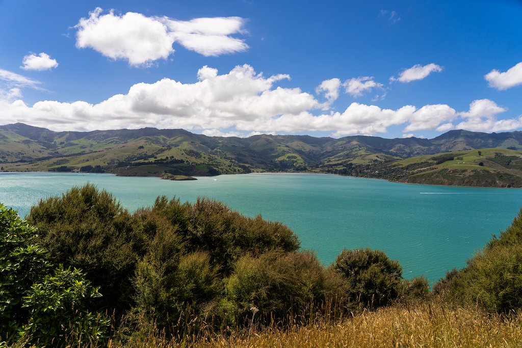 Views of Akaroa
