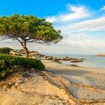 Beach Day on the Chalkidiki Peninsula near Thessaloniki