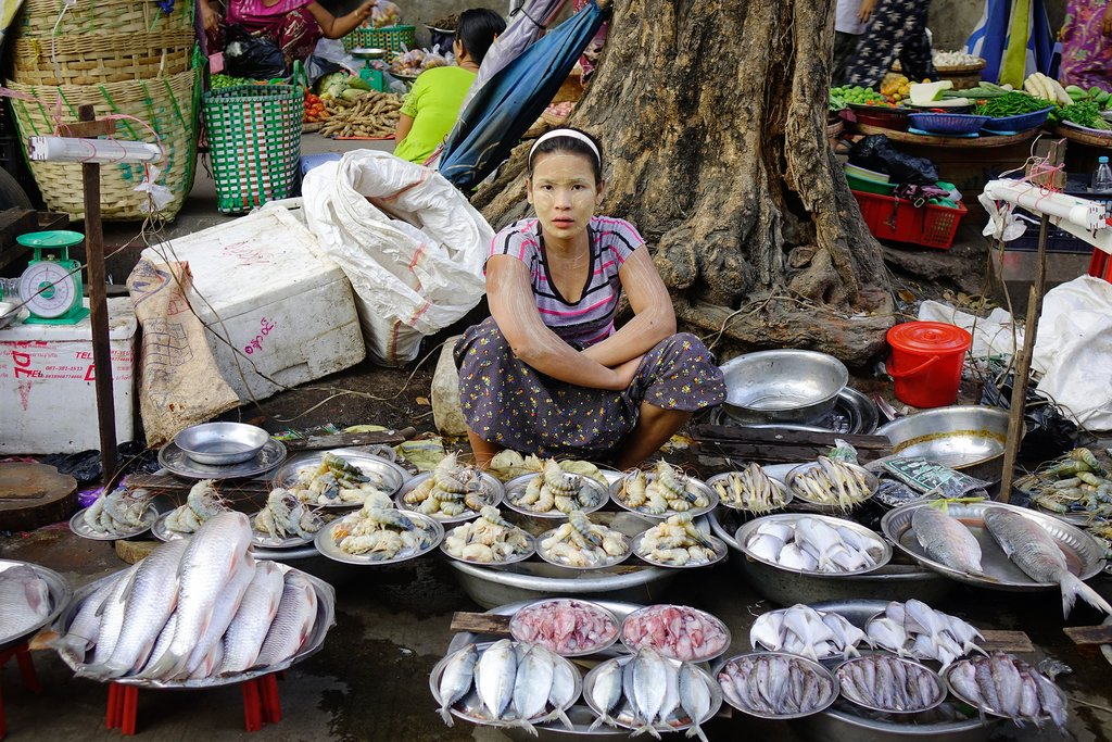 A woman selling fresh fish at street market in Yangon