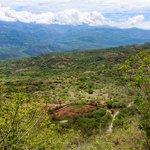 The Suárez Canyon