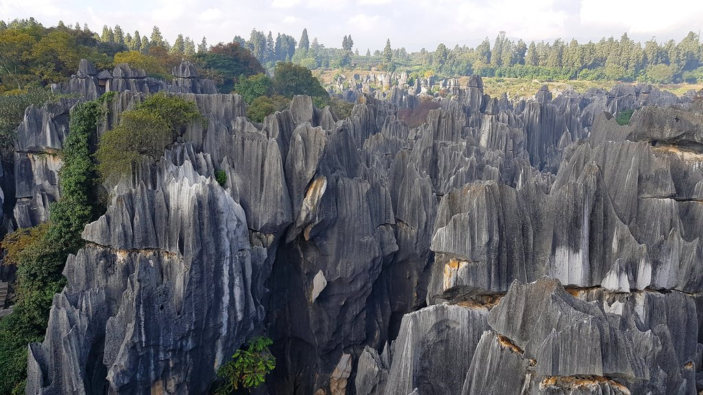 The Stone Forest, in Yunnan province