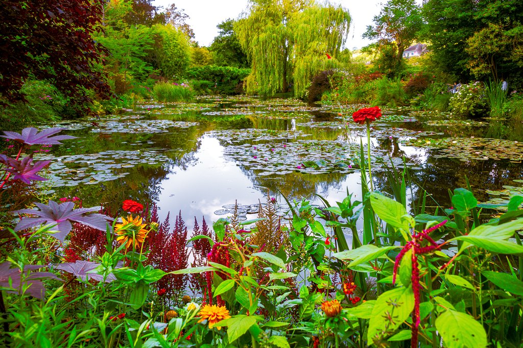 Monet garden and pond at Giverny