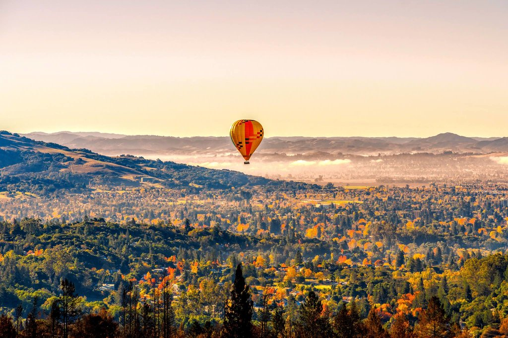 Hot air balloon over vineyards (Photos courtesy of Calistoga Balloons)