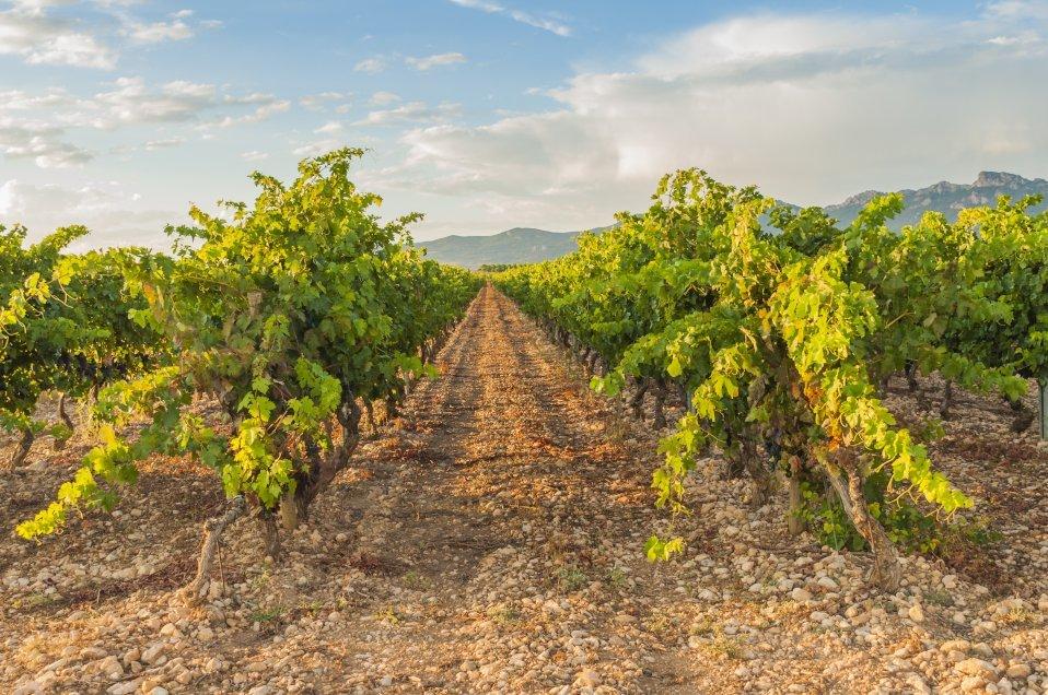 How to Get from San Sebastian to La Rioja