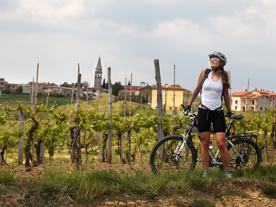 The rolling hills & vineyards of Istria