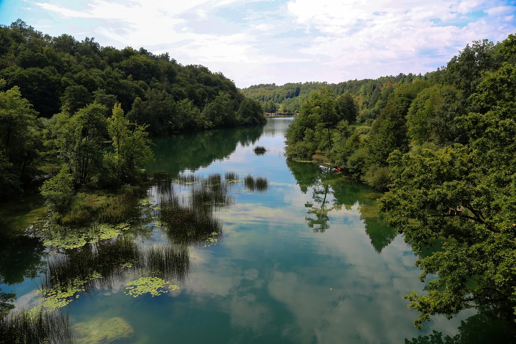 Mreznica river