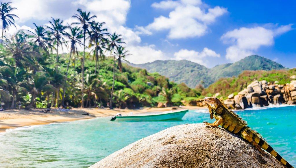 How to Get from Santa Marta to Tayrona Park