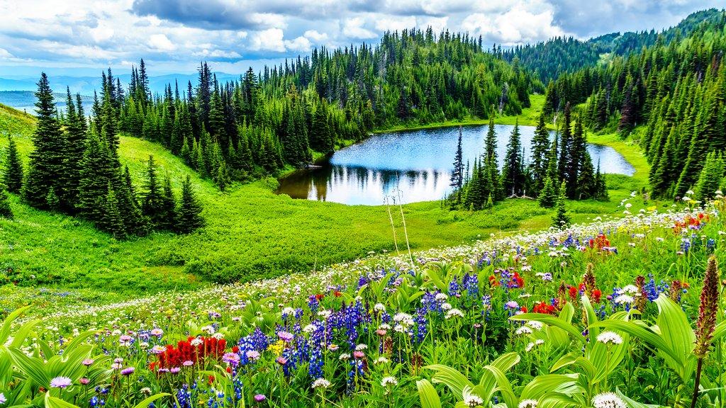 Tod Lake near Sun Peaks Resort