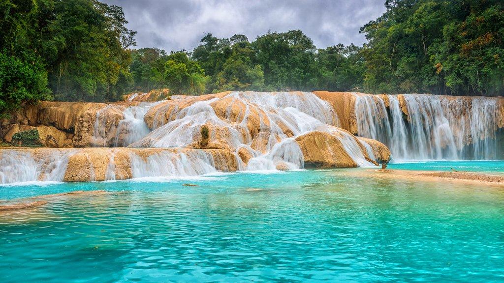Mexico - Chiapas - Agua Azul Waterfalls