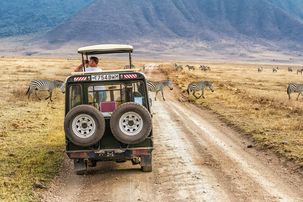 Safari through the Ngorongoro Crater