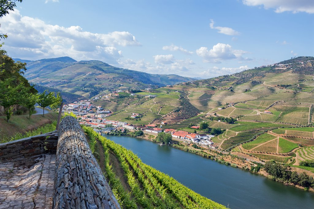 Douro River Valley and Peso de Régua