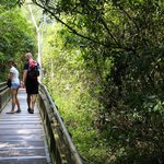A network of trails leads visitors around Iguazú Falls