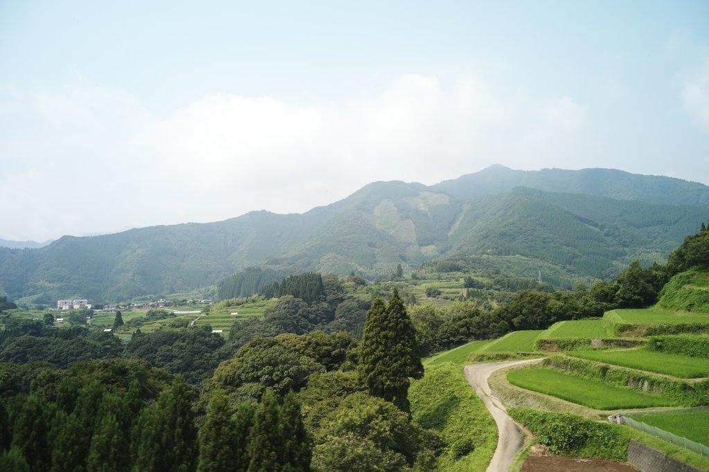 Takachiho fields