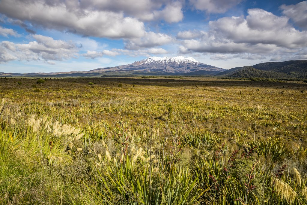New Zealand - An image of a Mount Ruapehu volcano
