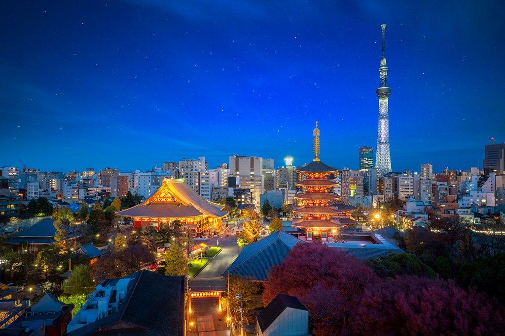 View across the Sensoji Temple, Tokyo.