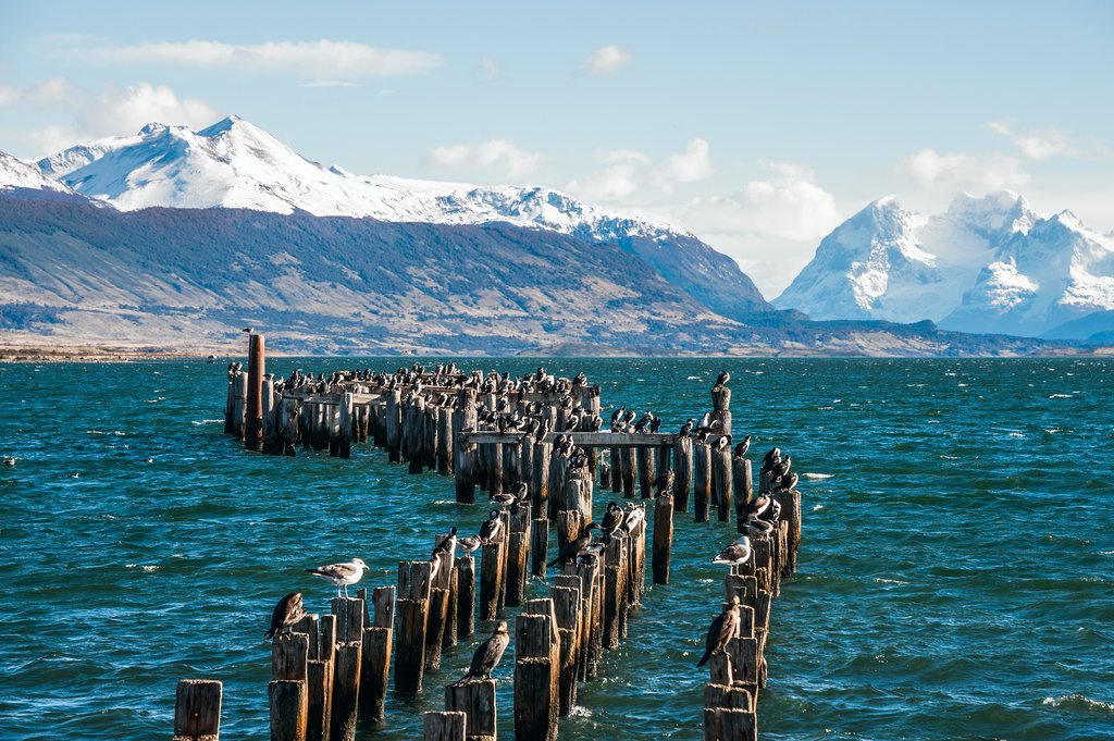 Start your boat tour in Puerto Natales