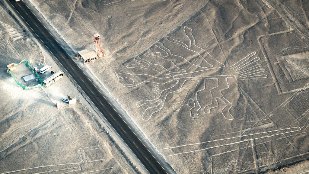 The world-famous pre-Columbian geoglyphs known as the Nazca Lines