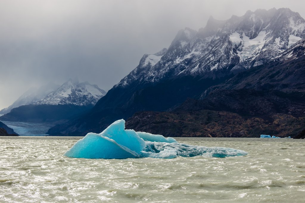 Boat past floating icebergs on your way to Grey Glacier