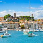 Return to Cannes in the afternoon where you'll have more free time