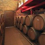 Vineyard Visit & Wine Tasting in Zagori