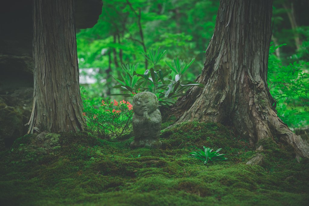 A serene monk statue in a forest