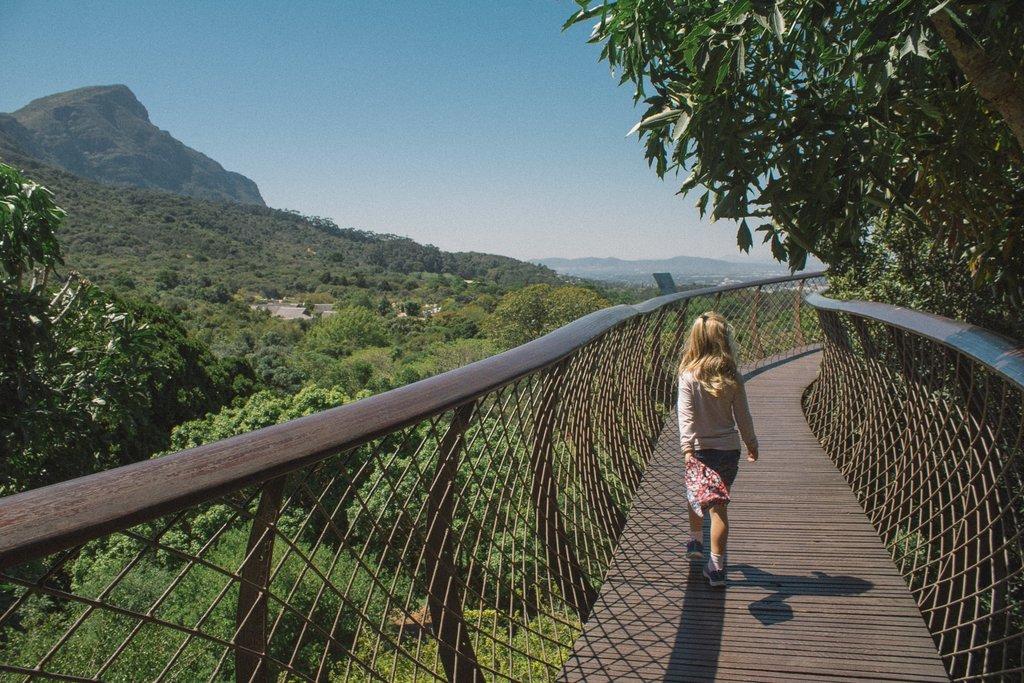 Kirstenbosch Botanical Garden treetop walk